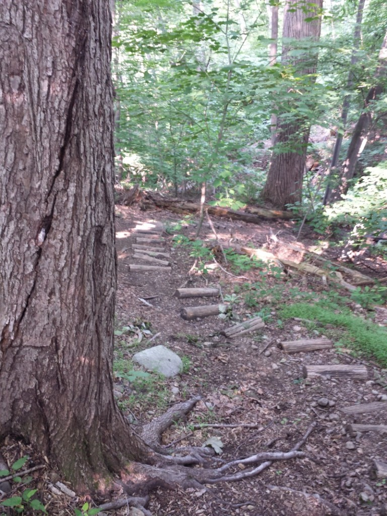 Phillipstown Park Log Stairs