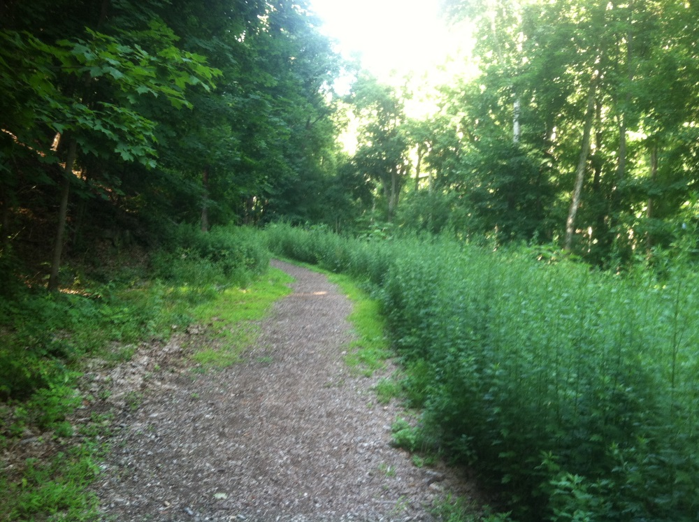 West Point Foundry Preserve Upper  Path