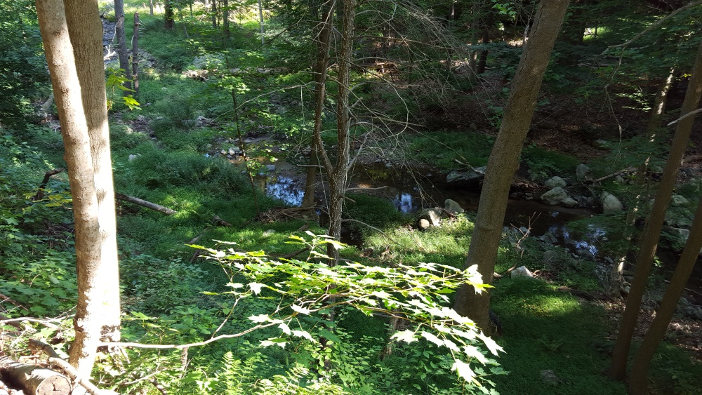 north redoubt stream