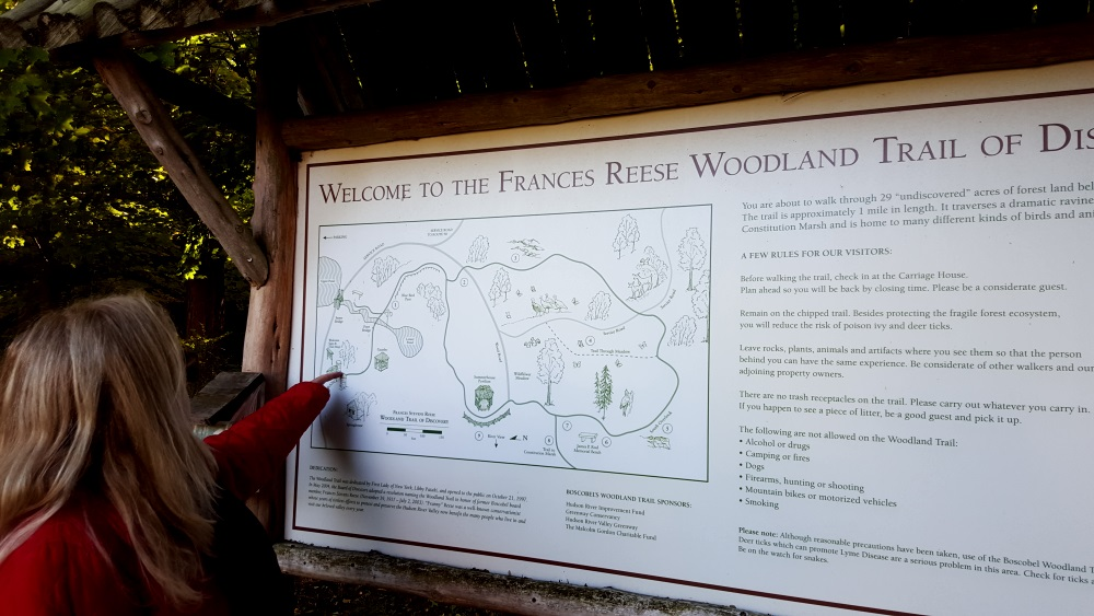 Boscobel Woodland Beautiful Map and Story
