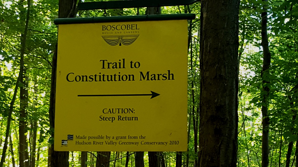 Boscobel Woodland Beautiful trail to Constitution Marsh