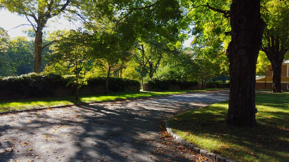 Boscobel Woodland Trail Alon the driveway