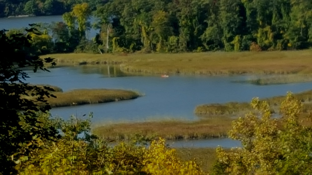 boscobel Notes lone Kayaker in the marsh