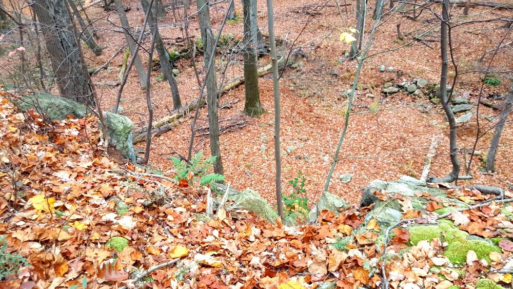 Manitoga Paths higher 250 feet