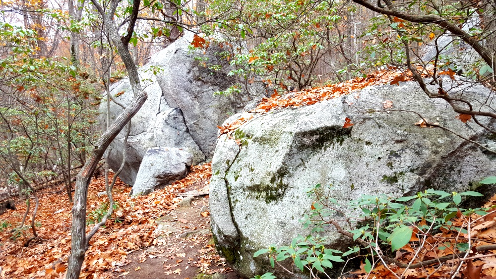 manitoga paths very old boulders was a quarry