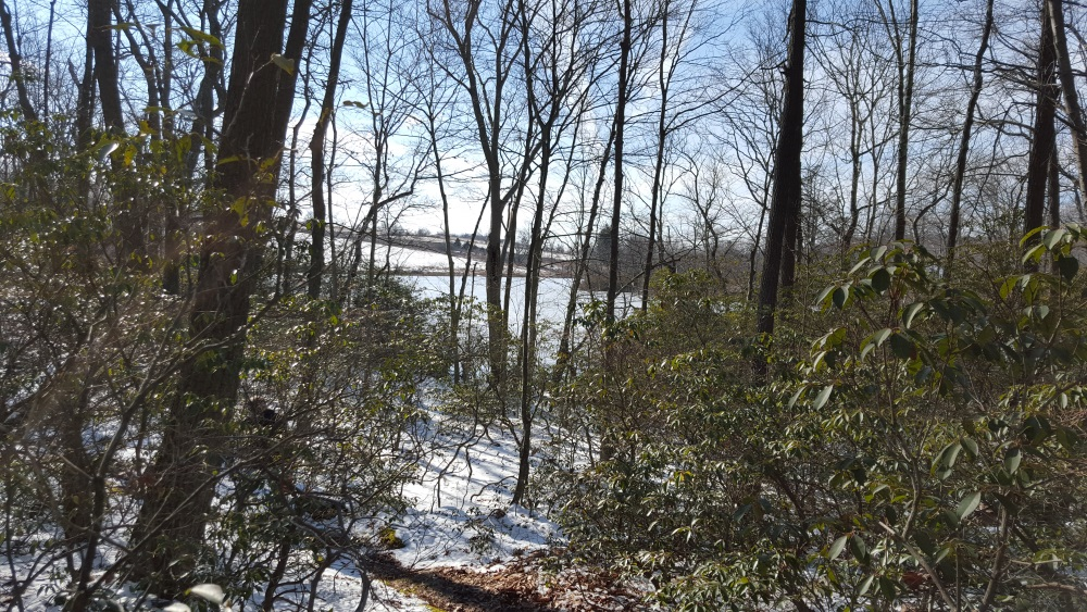 Charcoal Burner Path to Pond