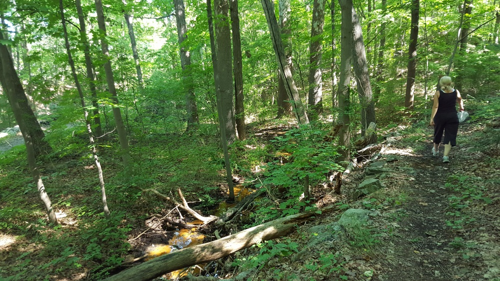 Garrison Prayer Trail Starts Heading A mild incline into the woods