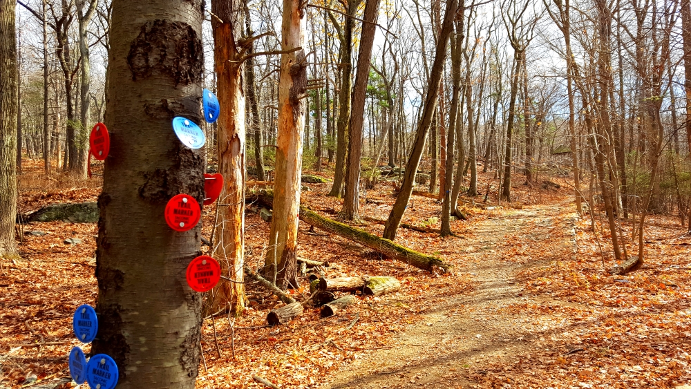 sugarloaf-hill-philipstown-blue-and-red-trails-merge