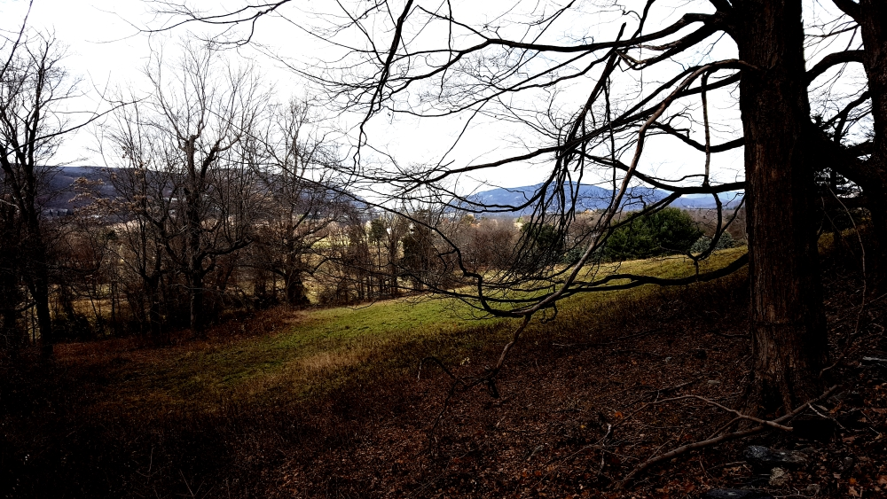 sugarloaf-hill-philipstown-meadow-view-long-distance